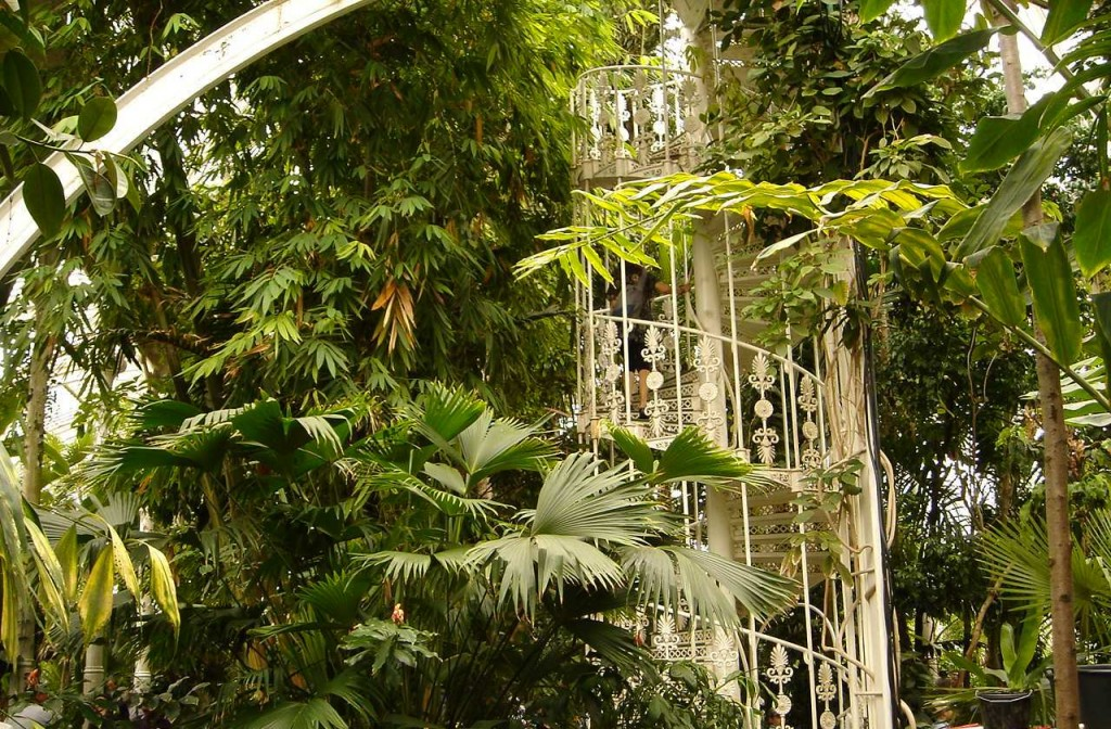 inside the Palm House, going up to the second level